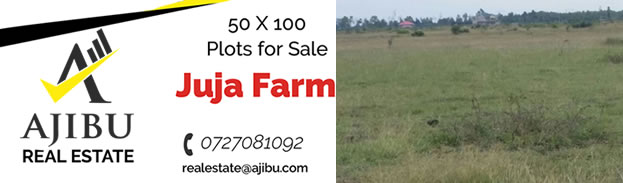 Plots for Sale in Juja Farm