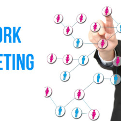 Affiliate and internet marketing opportunity