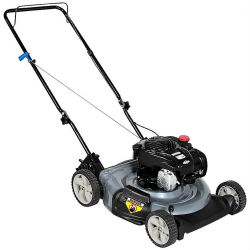 Craftsman 4.5hp, 140cc, without bag