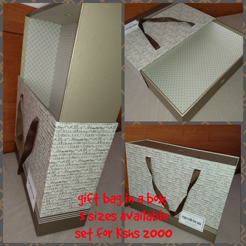gift bag in a box (800x800)