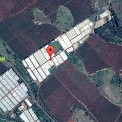 Prime 65 Acre Plot For Sale On Thika-Gatura Road_Gallery1