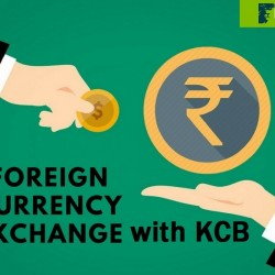 how-to-exchange-foreign-currency-in-India-1
