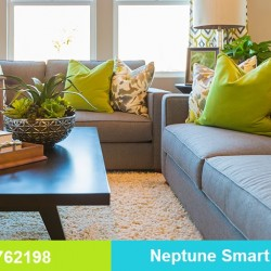 house cleaning by Neptune