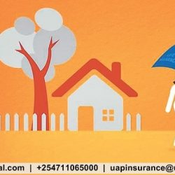 life_insurance_policy